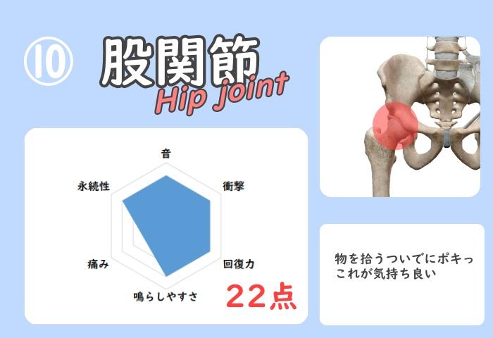 股関節骨ポキグラフ