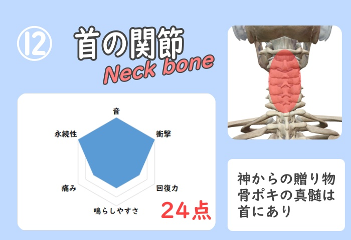 首の骨ポキグラフ