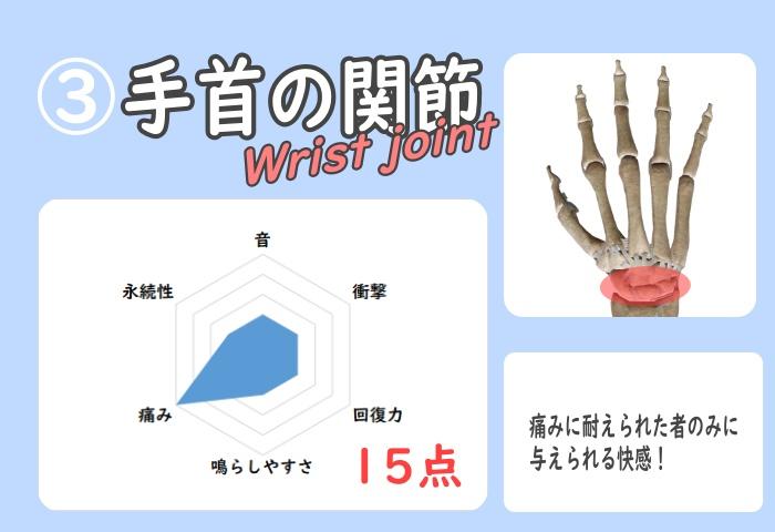 手首の骨ポキグラフ