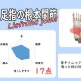 リスフラン関節骨ポキグラフ