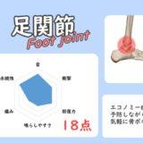 足関節の骨ポキグラフ