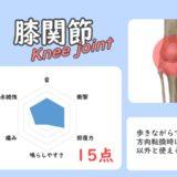 膝関節の骨ポキグラフ