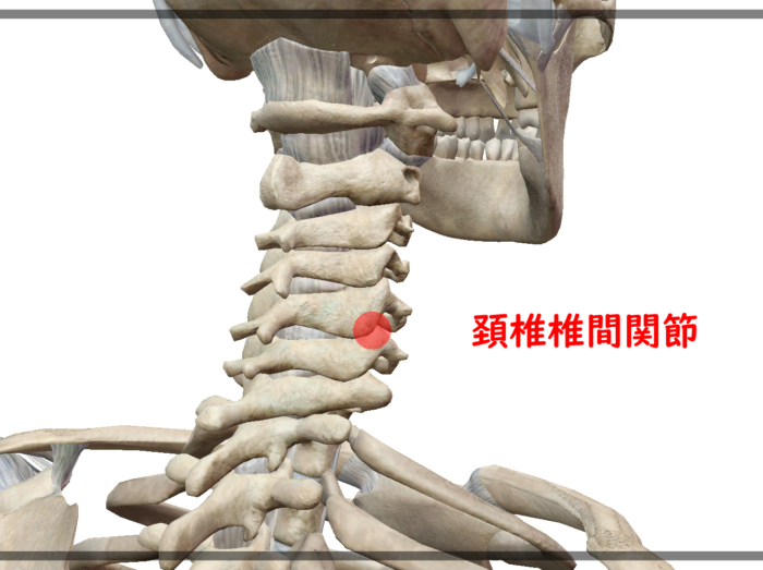頸部椎間関節