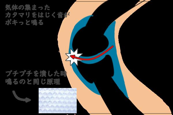 関節の音が鳴る図説